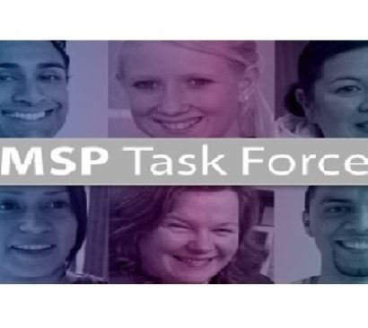 SUBMISSION:  MSP Task Force